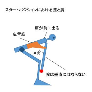肩と腕の位置