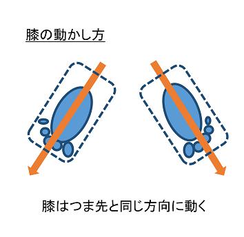 膝の動かし方