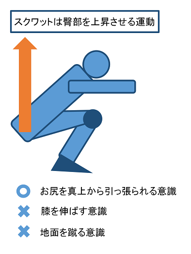 臀部の上昇